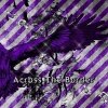 Copertina di 'Across The Border [Limited Edition Type B]'