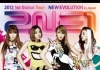 Copertina di '2012 2NE1 GLOBAL TOUR [NEW EVOLUTION IN JAPAN]'