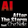 Copertina di 'After The Storm feat. Che'nelle'