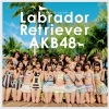 Copertina di 'Labrador Retriever [Theater Edition]'