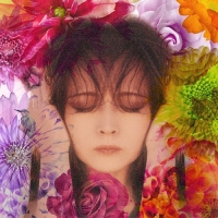 Coperdina di FIXER - Akina Nakamori
